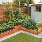 Small-space Food Garden Design Secrets