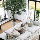 Styling-Ideen: Zimmerpflanzen als Trend Deko