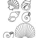 19 dessins de coloriage Coquillage De Mer à imprimer