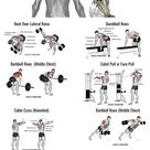 10 Rear Delts Shoulder Workout to Stimulate Growth