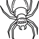 Printable Halloween Spider Coloring Page for Kids