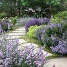 Mediterranean Inspired Garden Hedge Plants Designs ~ Matchness.com