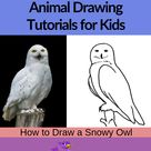 How to Draw a Snowy Owl step by step tutorial for kids