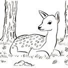 Fawn Coloring Page - Art Starts