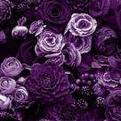 purple flowers  shared by Lucian on We Heart It