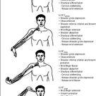 Image result for upper limb tension test