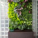 Vertical Garden Systems