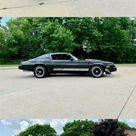beautiful 1980 Chevrolet Camaro for sale