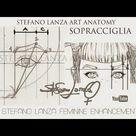Lezioni di disegno e Anatomia Artistica   Art   Disegno   Art tutorial   Art reference