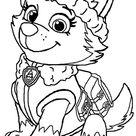 Desenhos de Patrulha Canina para imprimir e colorir | Como fazer em casa