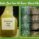 Homemade Weed Killers