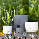 2 Layer Self Watering Round Plant Pot, Home Garden Decor, Lazy Flower Pot Imitation Porcelain Series Gardening Flower Pots