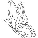 112 Best Butterfly Coloring Pages | Free Printables for Kids & Adults
