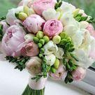 Es gibt so viele verschiedene Arten von Blumen aus der ganzen Welt. Diese Liste von   Easy flowers
