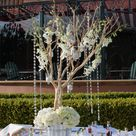 Manzanita Wedding