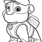 Paw Patrol Rubble coloring page | Free Printable Coloring Pages