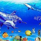 Marine Life 5D DIY Paint By Diamond Kit