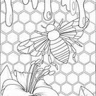 Honey Bee Hive Coloring Pages Sketch Coloring Page