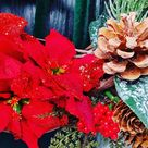 Christmas wreath, xmas wreath, stag,Christmas stag decor,front door decorations, holiday decor, Christmas decor,red and green decor,wreath