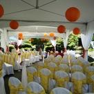 Orange Yellow Weddings