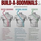 5 Moves to Get the Abdominal V-shape You've Always Wanted - GymGuider.com