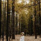 Forest Maternity Photos - Traveling Wedding Photographer Kayla Esparza