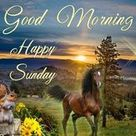Make It A Great Day - Good Morning Happy Sunday