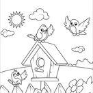 Birds near a Birdhouse