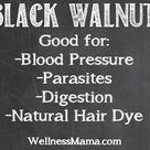 Black Walnut Hull Herb Profile
