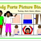 Body Parts Picture Bingo: Tummy, Chest, Knees, Elbows and Back (SB10262)