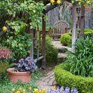 holt_409_0307.jpg | PhotoBotanic Stock Photography Garden Library