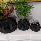 Modern Planter Set, Minimal Decor, Black & White   Indoor Planter Gift Set