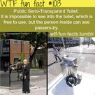Funny Weird Facts