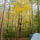 Fall Outdoor Camping and Hiking Trip to Shawnee National Forest, Illinois