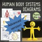 Advanced Human Body Systems or Anatomy Worksheets & Diagrams [Distance Learning]