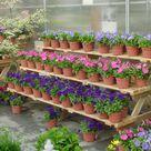 Garden Center Displays