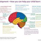brain development – More Good Days – Parenting Blog
