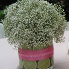 Lime Centerpiece