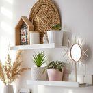 Shelf Decos