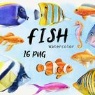 Watercolor Fish Clipart, Ocean Clip art, Sea life Animals, Tropical Coral Reef, Colorful Fish Clipart, Nautical, instant download, PNG