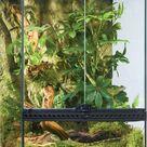 Plantorama Exo Terra terrarium 45x45x45 cm