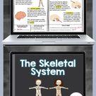 Skeletal System Digital Unit for Google Classroom