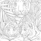 Tigers - Printable Adult Coloring Page from Favoreads (Coloring book pages for adults and kids, Coloring sheets, Coloring designs)