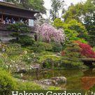 Hakone Gardens, Saratoga CA