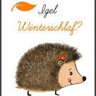 Igel Isi und der Winterschlaf (Lerngeschichte & Printable) - Geschichten für Kinder mit Wilma Wochenwurm