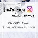 Instagram Algorithmus Update: Insider News & Tipps für mehr Follower