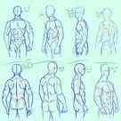 simplified anatomy 01   male torso by mamoonart on DeviantArt