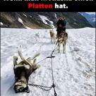 Wenn man in Alaska einen Platten hat..