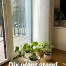 Diy plant stand, diy home decor, indoor plants, houseplants