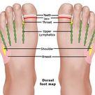Foot Reflexology Chart Planter, Dorsal, Medial & Lateral Map